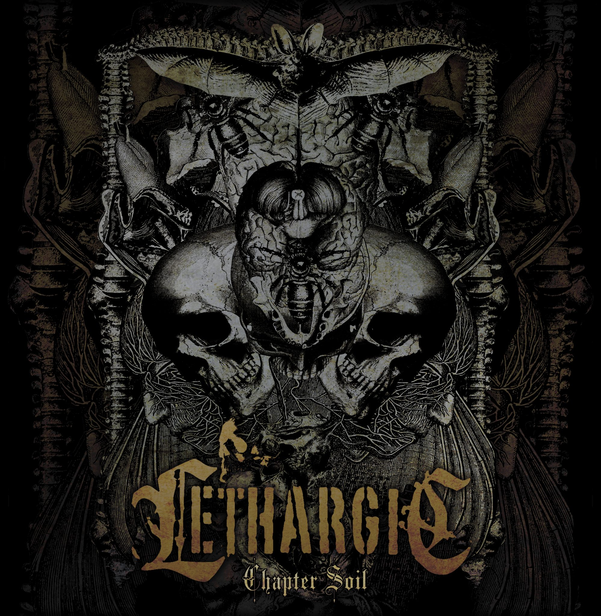 cover lethargic